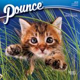 Pounce - 2018 Mini Calendar Kalenders