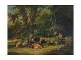 A Shady Corner, 1840 Giclee Print by William Shayer