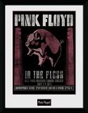 Pink Floyd - 1977 Collector Print