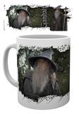 Lord of the Rings - Gandalf Mug Krus