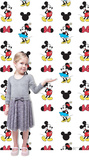 Mickey and Minnie Step and Repeat Standup Cardboard Cutouts