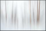 Fog Foto op hout van Ursula Abresch