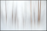 Fog Fotografía montada en tabla por Ursula Abresch
