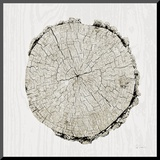 Woodland Years II Kunst op hout van Sue Schlabach