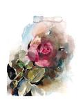 Single Rose Posters av Sophia Rodionov