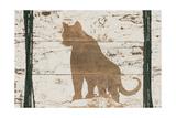 Cougar in Reverse Prints by Ramona Murdock