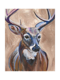 Deer Posters by Anne Seay