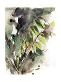 Botanicals Plakat av Sophia Rodionov
