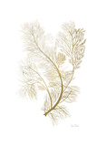 Fern Algae Gold on White Print by Ramona Murdock