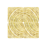 Tree Ring Triptych I Poster by Ramona Murdock