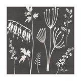 Black and White Cyanotype Poster par Shanni Welsh
