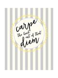Carpe Diem Premium Giclee-trykk av Bella Dos Santos