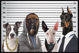 Most Wanted Dogs Kunstdrucke