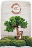 Bonsai Zen Posters