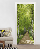 Birkenallee Door Wallpaper Mural Behangposter