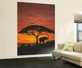 African Sunset Wallpaper Mural