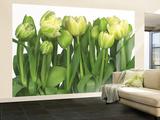 Tulips Wallpaper Mural