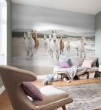 White Horses Tapetmaleri