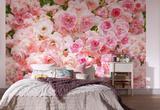Rosa Wallpaper Mural