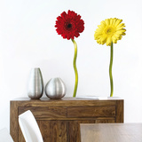 Gerbera Wall Decal