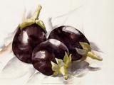 Eggplants, 1927 Posters por Charles Demuth