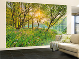Spring Lake Wallpaper Mural