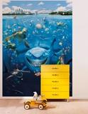 Nemo Wallpaper Mural