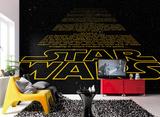 Star Wars - Intro Wandgemälde