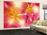 Summer Sun Wallpaper Mural