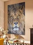 Lion Tapetmaleri