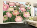 Gentle Rosé Wallpaper Mural