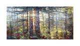 Redwoods Giclee Print by Amanda Houston