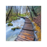 River Walk Giclee Print by Jim Nilsen