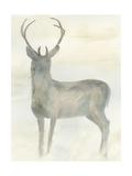 Solo Deer 2 Premium Giclee-trykk av Beverly Dyer