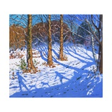 November Snow, Allestree Park, Derby, 2017 Giclee Print by Andrew Macara