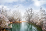 White Paradise Lámina fotográfica por Philippe Sainte-Laudy