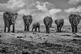 Großfamilie Fotografie-Druck von Marcel Rebro