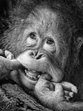 Big Smile.....Please Fotografie-Druck von Angela Muliani Hartojo