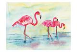 Sunset Flamingoes I Posters av Beverly Dyer