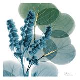 Golden Lilly Of Eucalyptus Arte di Albert Koetsier