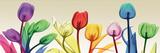 Floral Rainbow Splurge Poster by Albert Koetsier