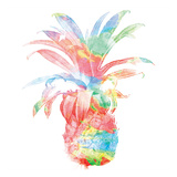 Colorful Pineapple Clean Print by Jace Grey