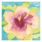 Sunset Hibiscus I Posters av Beverly Dyer