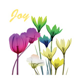 Floral Pop Joy Poster di Albert Koetsier