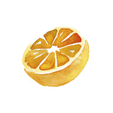 Zesty Slice Prints by Kristine Hegre