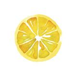 Citrus Slice Posters by Kristine Hegre