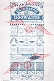 Harry Potter - Quidditch At Hogwarts Poster
