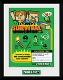 Minecraft - Survival Kit Lámina de coleccionista