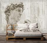 Renaissance Impression - Non Woven Mural Papier peint