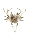 Deer Skull & Flowers I Premium Giclee Print by Naomi McCavitt